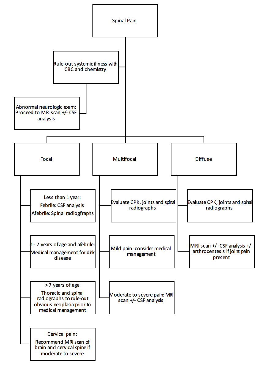 Figure 1. Decision-making algorithm for medical management of spinal pain in dogs.