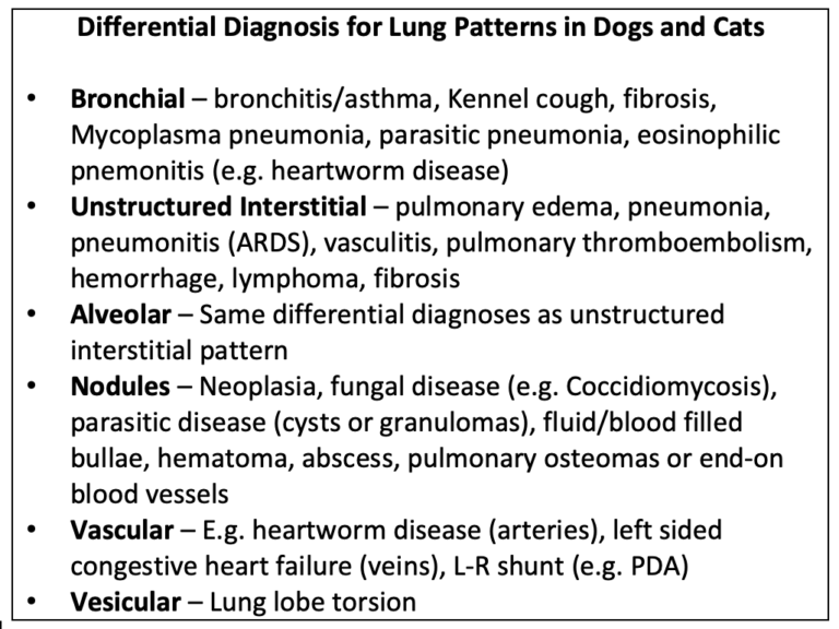 Table 1. Differential diagnosis for common lung patterns in dogs and cats.