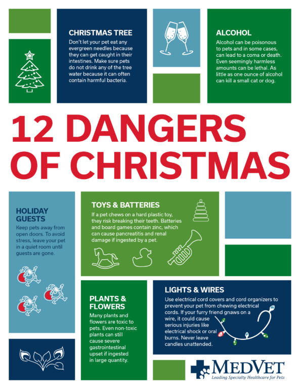 12 Dangers of Christmas