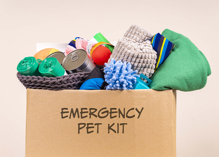 Disaster Preparation and Your Pet - Emergency Pet Kit